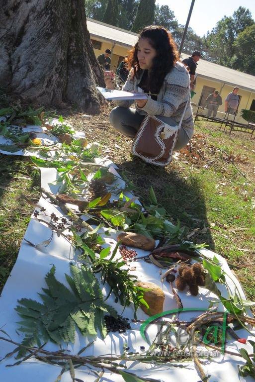 Encuentro Regional de Agroecología, Corrientes junio 2013