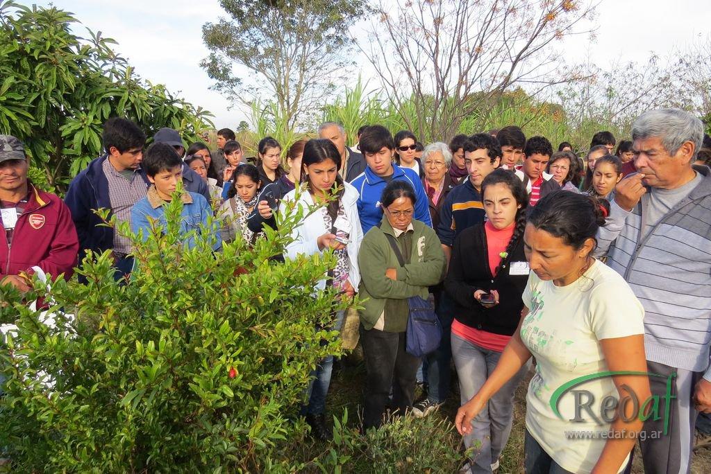 encuentro_agroecologiactes041