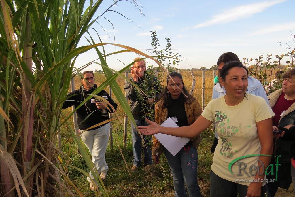 encuentro_agroecologiactes042