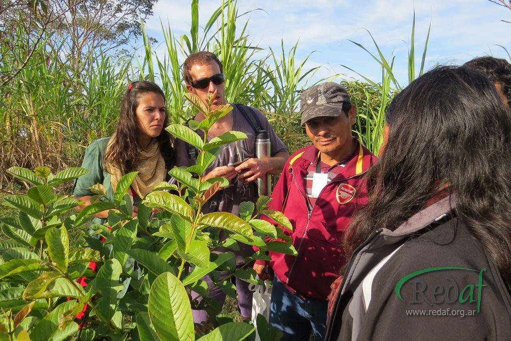 encuentro_agroecologiactes049