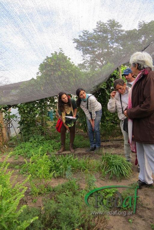 encuentro_agroecologiactes056