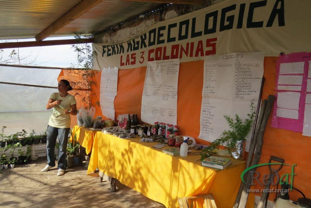 encuentro_agroecologiactes060