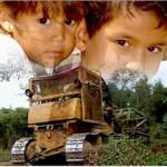 1° Informe REDAF: A un año de la Ley de Bosques: Panorama en la Región Chaqueña Argentina