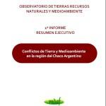 1° Informe – Conflictos por la Tenencia de la Tierra y Medioambiente en la Región Chaqueña Argentina