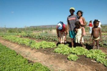 agricultura-familiar-2