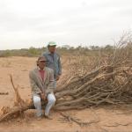 """1° Informe Bosques y Deforestación: Salta – Ley de Bosques y situación del Bosque chaqueño en la provincia"""""""