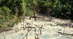 Campaña por el cese de la explotación petrolera en el Parque Nacional Calilegua (Jujuy)