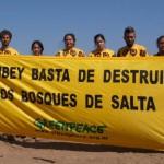 Más de 100 organizaciones piden que Salta respete la Ley Nacional de Bosques