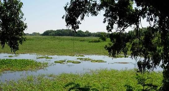 Ramsar reconquista