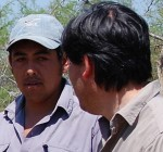 """""""La deforestación más grande en Chile fue hace varias décadas"""""""